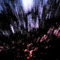 Twilight Tree Travel by Joshua Bales