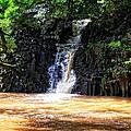 Twin Falls Waterfall by Lars Lentz