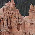 Twin Peaks by Gary and Loretta Bullock