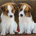 Twin Puppies Portrait by R christopher Vest