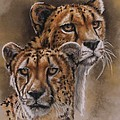 Twins by Barbara Keith