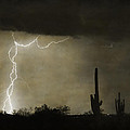 Twisted Desert Lightning Storm by James BO  Insogna