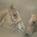 Two Amigos by Linda Blair
