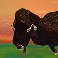 Two Bison by Kae Cheatham