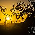 Two Boys Silhouette In Spectacular Golden Sunset  by Benjamin Howell