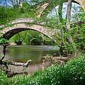 Two Bridges by Dirk Ercken