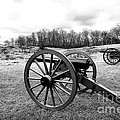 Two Cannons by John Rizzuto