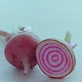 Two Chioggia Beets by Romulo Yanes