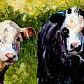 Two Cows by Molly Poole