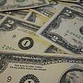 Two Dollar Bills by Erica  Darknell