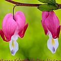 Two Hearts Valentine's Day by Heidi Smith