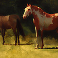 Two Horses by Mountain Dreams