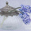 Two Hyacinth Flowers by Ann Garrett