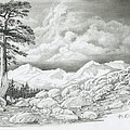 Two Junipers - Starr Mountain by Robert Miller
