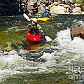 Two Kayakers On A Whitewater Course by Les Palenik