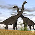 Two Large Brachiosaurus In Prehistoric by Kostyantyn Ivanyshen