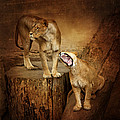 Two Lions by Heike Hultsch