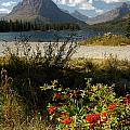 Two Medicine Lake In Glacier by Cindy Murphy - NightVisions