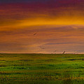 Two Mile Landing Colorful Sky by Bill Cannon