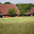 Two Old Barns by Lynn Sprowl