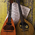 Two Old Mandolins by Garry Gay