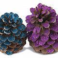Two Pineapples by Oscar Hurtado