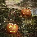 Two Pumpkins by Amanda Elwell