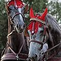 Two Red Devils by Angel Ciesniarska