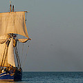 Two Ships Sailing To Port by Pineapple XVI
