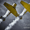 Two Soaring Harvards by Urbanmoon Photography