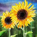 Two Sunflowers by Irina Sztukowski