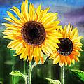 Two Suns Sunflowers by Irina Sztukowski