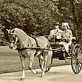 Two Wheel Cart by Wayne Sheeler