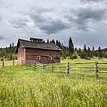 Two Window Barn by Fran Riley