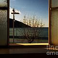 Window by Candido Salghero