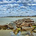 Tybee Beach by Diana Powell