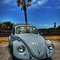 Tybee Island Beach Bug 002 by Lance Vaughn