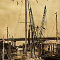 Tybee Island Shrimp Boats by Priscilla Burgers