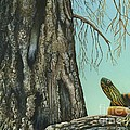 Tyler And The Tree by Rosellen Westerhoff