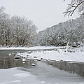 Tyler Park In Winter by William Jobes