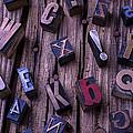 Typesetting Blocks by Garry Gay