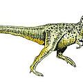 Tyrannosaurus Rex by Michael Vigliotti
