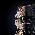 Tyrannosaurus Rex by Science Picture Co