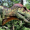 Tyrannosaurus Rex  T. Rex by Kristin Elmquist