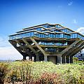 Ucsd Geisel Library by Nancy Ingersoll