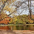 Ujazdowski Park In Warsaw by Artur Bogacki