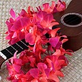 Ukulele And Red Lei by Mary Deal