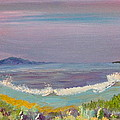 Ulua Beach At Sunset by David  Sulsh