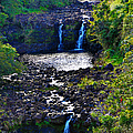 Umauma Falls I by Patricia Griffin Brett