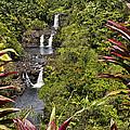 Umauma Falls by Mike Herdering